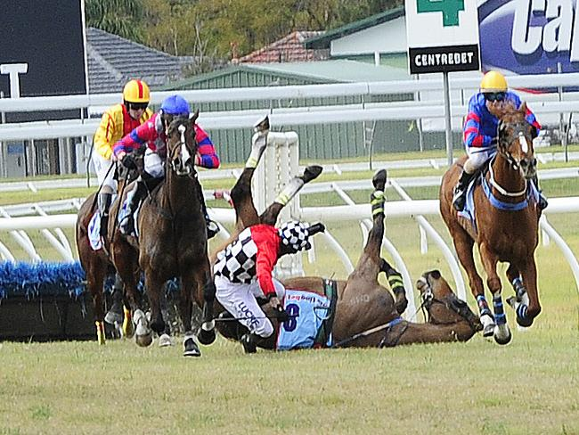 Jockey Paddy Flood and Fantauzzo come to grief in the Grand National Hurdle at Morphettville last week. Both jockey and horse were not injured in the tumble. Picture Mark Brake