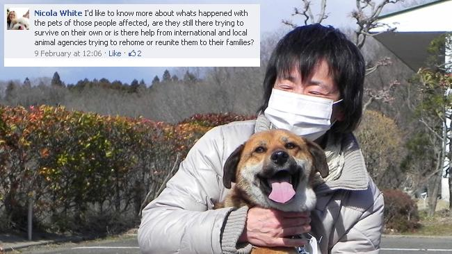 A MIyagi resident, Ms Onodera is reunited with her dog Ban - who was rescued from drifting ocean debris - more than three weeks after the tsunami. Picture: AP