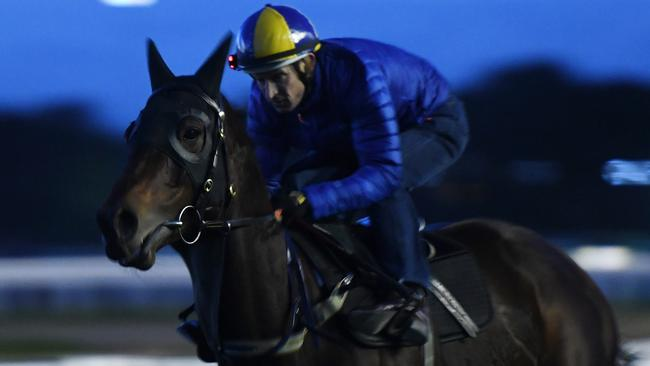 Champion mare Winx will step up her preparation with a barrier trial at Rosehill Gardens on Monday.