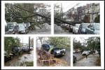 """@LAYAMVI: """"@noticias41ny .. queens Woodhaven"""" Picture: pic.twitter.com/u9TSEqXM"""