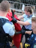 A small wallaby was seen on the Harbour bridge early this morning, police followed it off the bridge to the Conservatorium of music where it was cornered and eventually subdued. The police mounted division came to the rescue with an injection and then they transported the injured kanga to the Taronga Zoo in a horse float. Picture: John Grainger