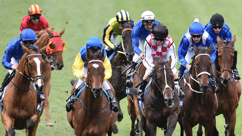 Over one million people will log onto Punters.com.au in the 48 hours around the Melbourne Cup.