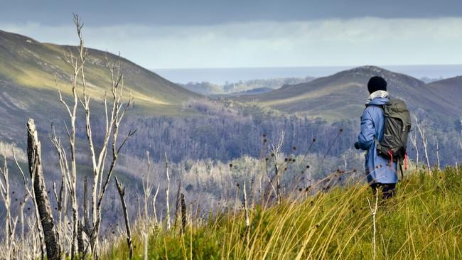 There's plenty of opportunity for hiking in Tassie's rugged wilderness.