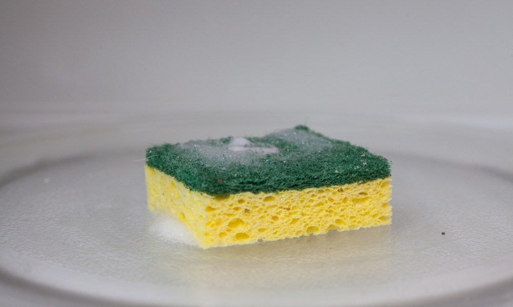 Why you should never clean your sponge in the microwave