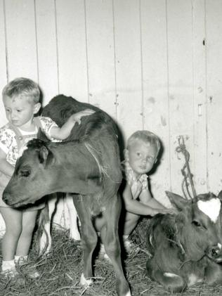 Children in cattle pavilion at the Royal Easter Show in the 1950s.