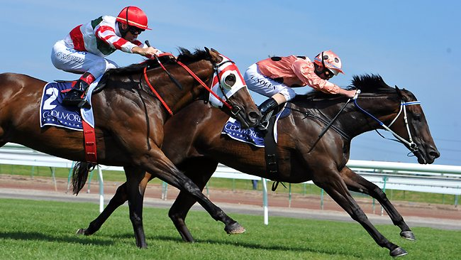 Black Caviar wins the Lightning Stakes ahead of Hay List.