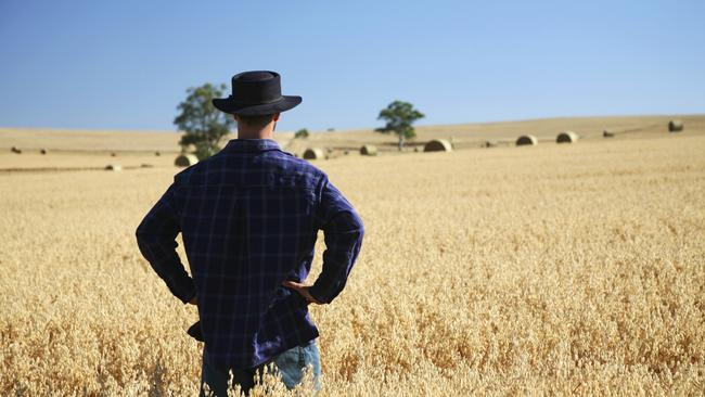 Backpackers often work on farms to extend their visas. Picture: iStock.