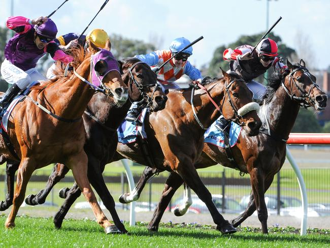 Dwayne Dunn gets his revenge as Our Nkwazi (left) looms late to defeat African Pulse and Solsay while Dunn's mount last week, the heavily supported odds-on runner Lord Of The Sky (far right), struggles as he finishes out of the placings again. Picture: Getty Images
