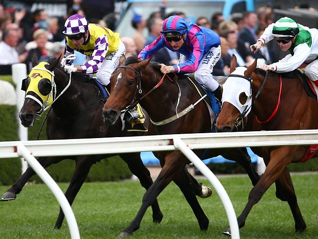 Sacred Falls (left) closes on Toydini and Speediness in last year's Schweppes Crystal Mile at Moonee Valley