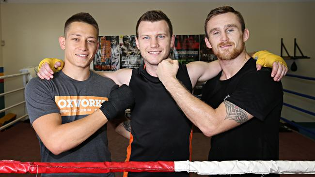 Jeff Horn has been sparring with rising star Liam Paro and junior-middleweight Dennis Hogan at the Stretton Gym. Picture: Annette Dew