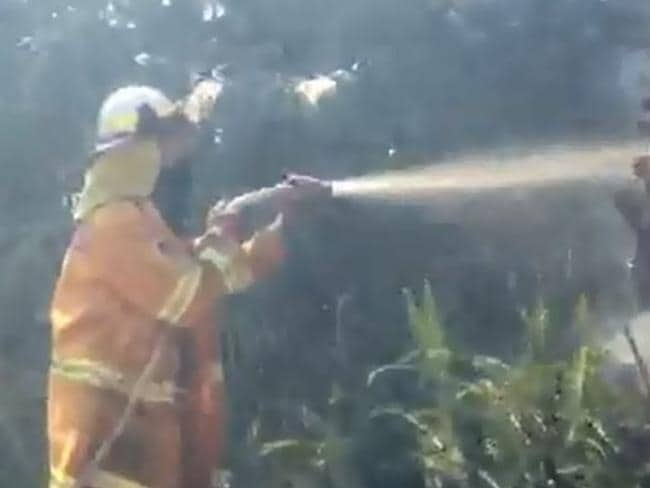 Tony Abbott fights on property blaze. Picture: The Manly Daily