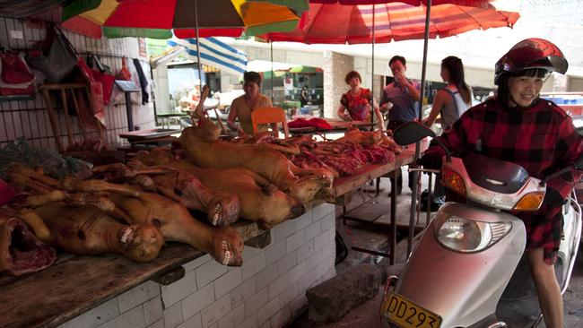 A stall selling slaughtered dogs in Yulin, where dog meat is eaten with lychees to celebrate the midsummer solstice. Picture: AFP