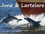 June and Lartelare dolphins Picture: Marianna Boorman