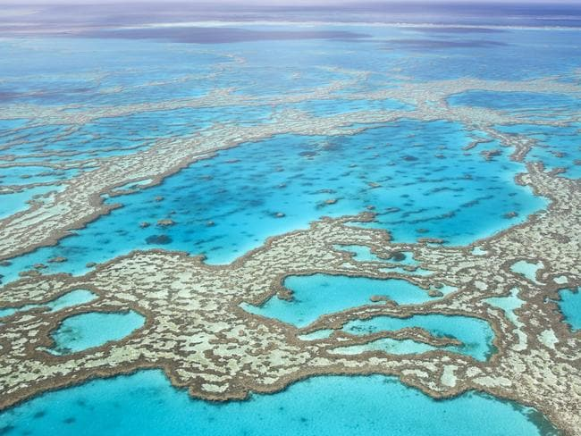 Great Barrier Reef is one of Australia's greatest gems.