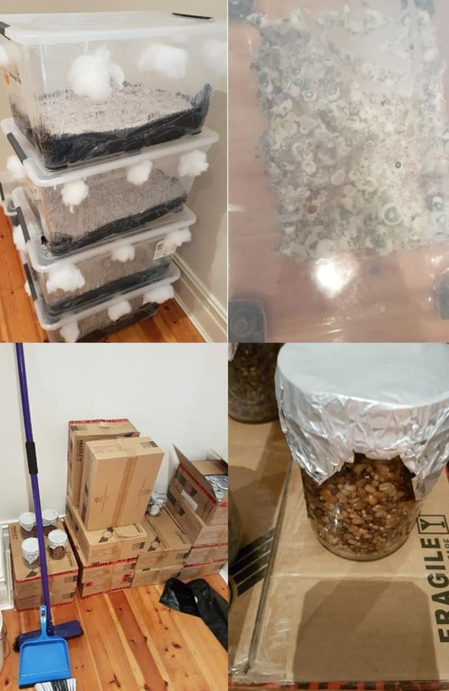 More photographs allegedly showing the manufacture and storage of the hallucinogenic Psilocybin inside the couple's Adelaide home