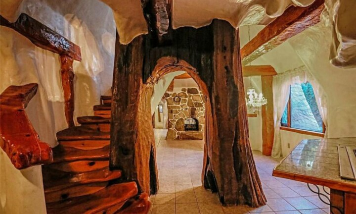 Tree-trunk-archway