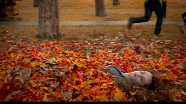 Playing in the leaves is so romantic.