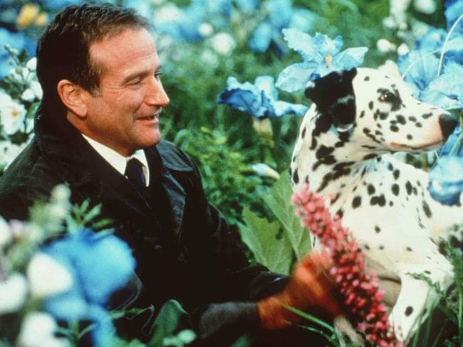 Robin Williams in scene from What Dreams May Come, 1998.