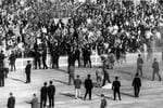 JULY 1971 : Anti-apartheid protesters in the crowd spill on to the field during Australia v South Africa at the SCG in Sydney 07/71. pic News Ltd.