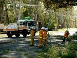 CFS workers clearing debris on Greenhill Rd, at Hazelwwod Park. Picture: Roy Van Der Vegt