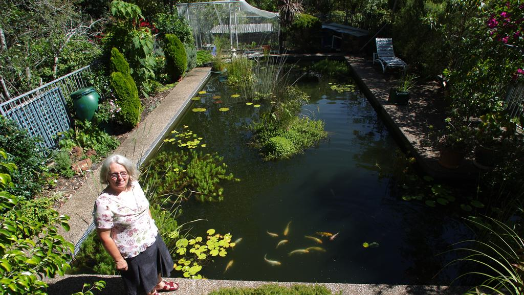 Blacktown councillor proposes pools to ponds scheme daily telegraph for Pond to swimming pool conversions
