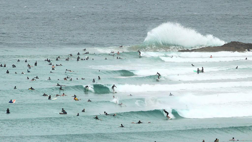 surf australia snapper rocks