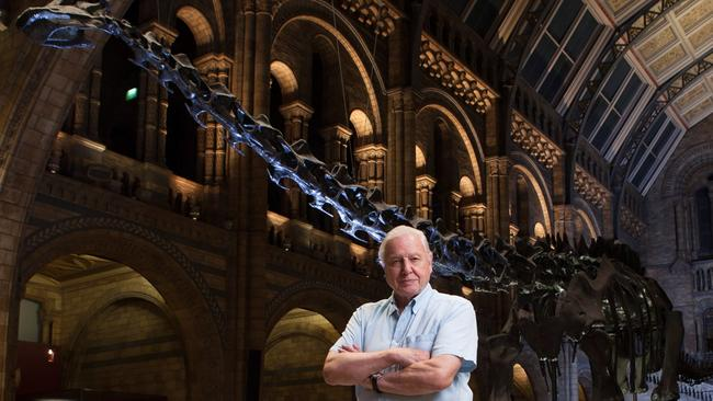 Museum Alive 3D — IMAX Melbourne David Attenborough