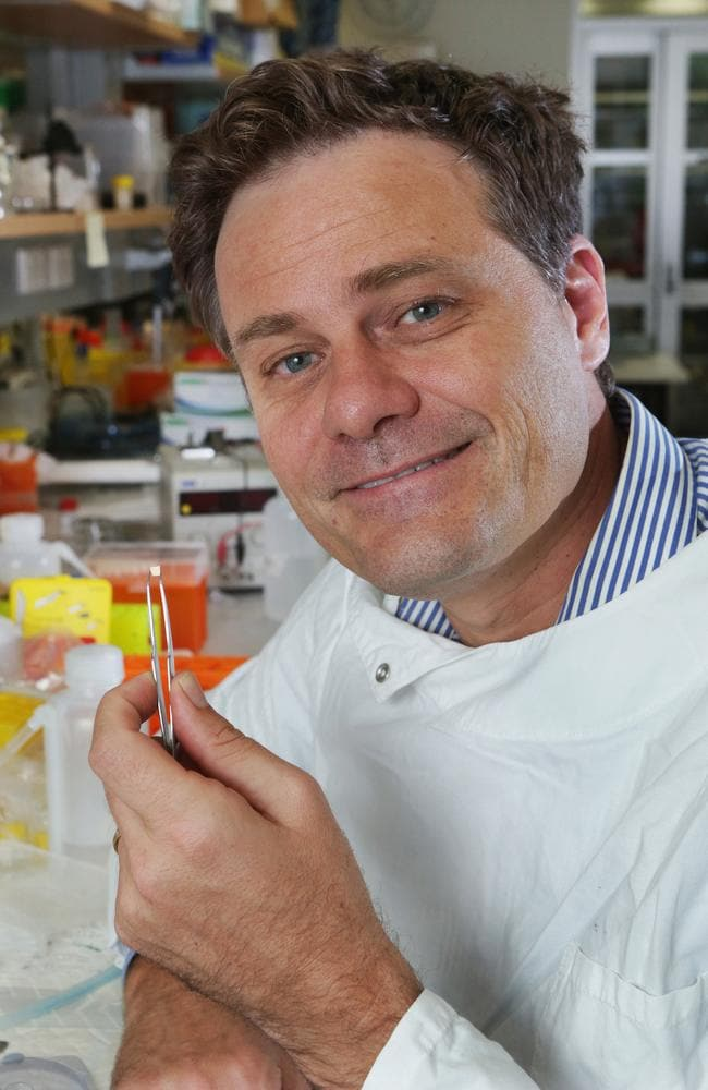 Professor Mark Kendall pictured with his Nanopatch needle-free vaccine device in his lab at the University of Queensland. Picture: Tim Marsden