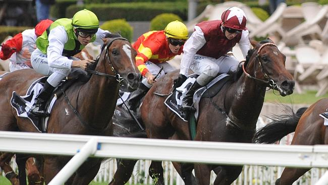 Mr Cha Cha (left) has form behind good horses and performs well on dead surfaces. Picture: Simon Bullard