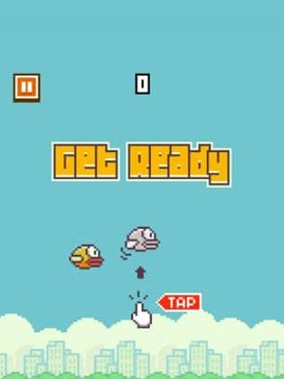 Don't get in a flap ... the game was a ...