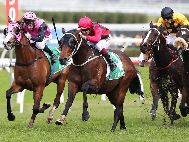 Hugh Bowman drives Rock Sturdy to an impressive win at Royal Randwick. Picture: Getty Images
