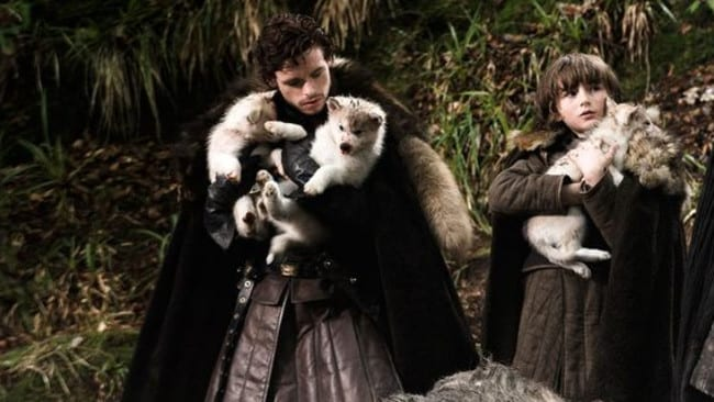 Game of Thrones ... Robb and Bran Stark adopt the new-found direwolf cubs. Picture: HBO