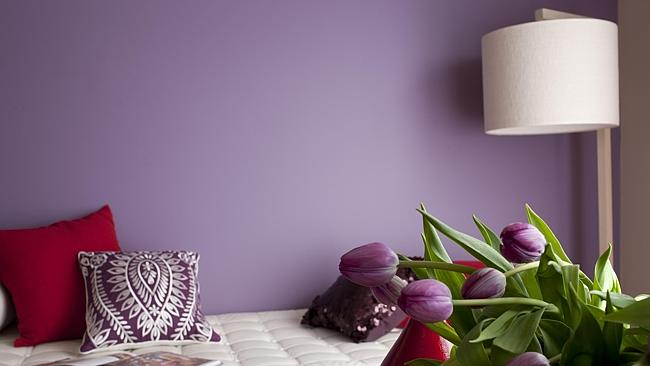 FEATURE walls in purples or orange are also out.
