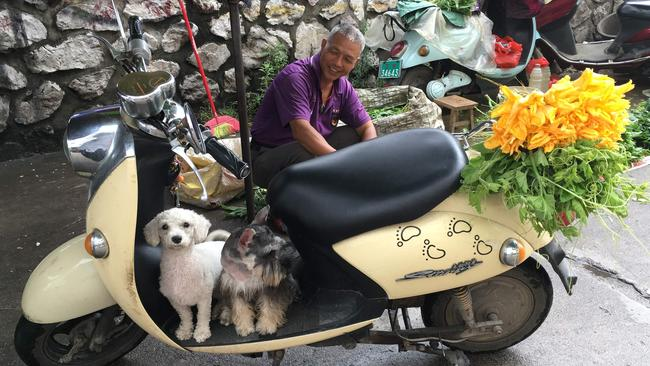 A man sits behind his pet dogs near a restaurant which serves dog meat in Yulin on June 21, 2017. Picture: AFP Photo / Becky Davis