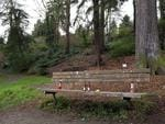 The Viretta Park memorial bench for Nirvana frontman Kurt Cobain. Fans of the 90s grunge band still flock to the seat to sign their names and leave tributes. The park, in the Denny-Blaine neighborhood of Seattle, Washington, is next to the home where Cobain committed suicide in April 1994. Picture: Splash News