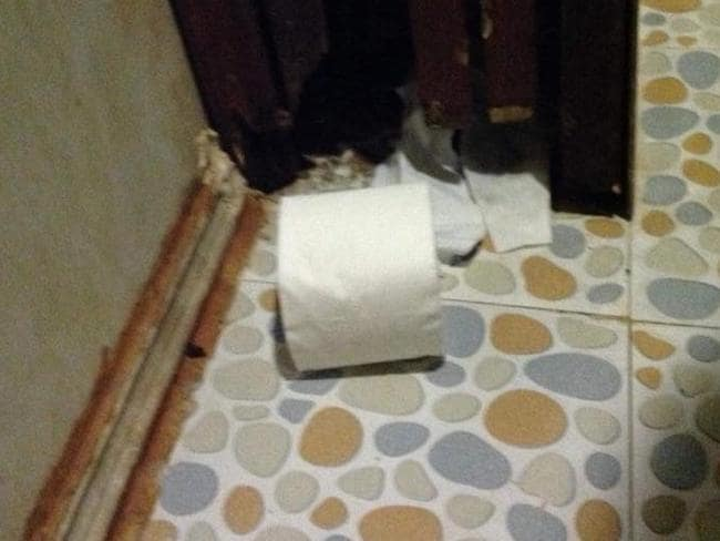 """""""Rat house under the sink in the bathroom,"""" she said. Picture: Lynne Ryan"""