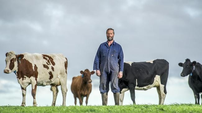 Murray Goulburn Is The Real Cause Of Dairy Farmers Pain