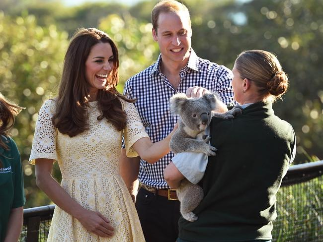 Catherine and William are clearly delighted to meet a koala at Taronga Zoo. Picture: Will