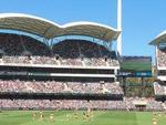 Your Adelaide Oval Showdown photos