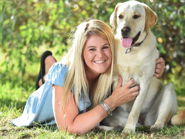 Australia Most Popular Dog Breed Revealed