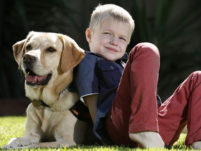 BEST MATES: Lachlan Masters and his dog Zeke, a specially trained autism assistance dog. Picture: DEAN MARTIN