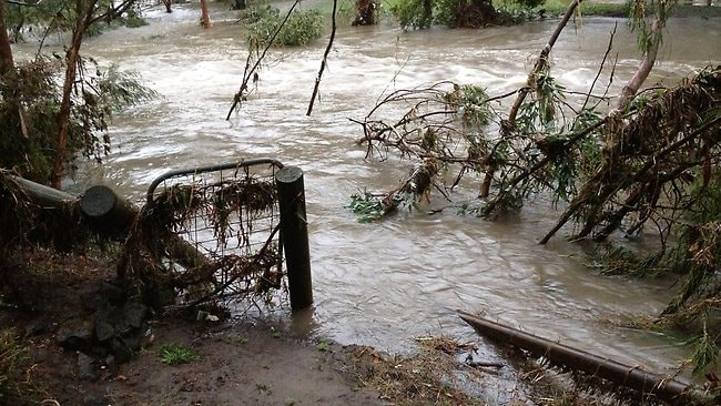 A reader's backyard on Darebin Creek in Alphington at 8am today. Picture: Campbell Bott
