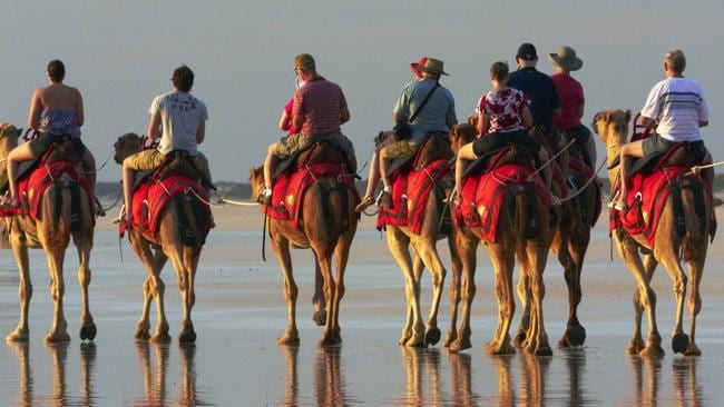 A train of camels carries tourists on Cable Beach. Picture: Supplied.