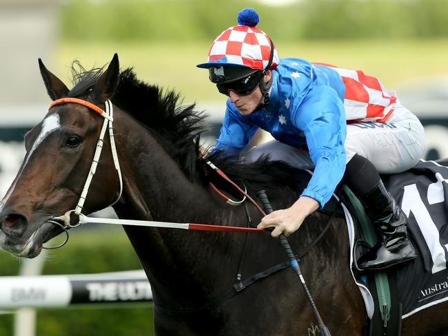 Smart stayer La Amistad wins the McKell Cup over 2400m at Royal Randwick in May.