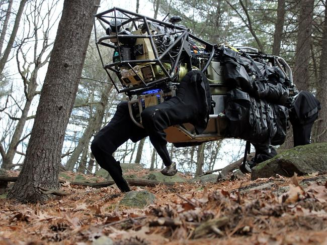 Meet your new pet. Google has bought Boston Dynamics, the company that makes advanced robots like Big Dog.
