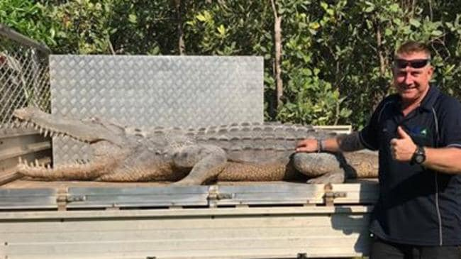 Howard Springs Holiday Park crocodile 'Snuggles' has been found. PICTURE: Supplied