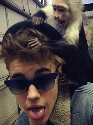 Show me the monkey ... Justin Bieber and Mally. Picture: Twitter