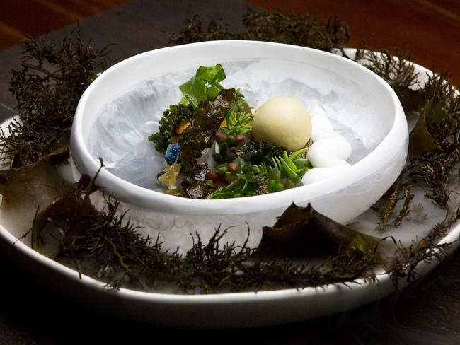 MasterChef Australia — Guest chef Shaun Quade's dish, Pearl on the Ocean Floor. Picture: Network Ten
