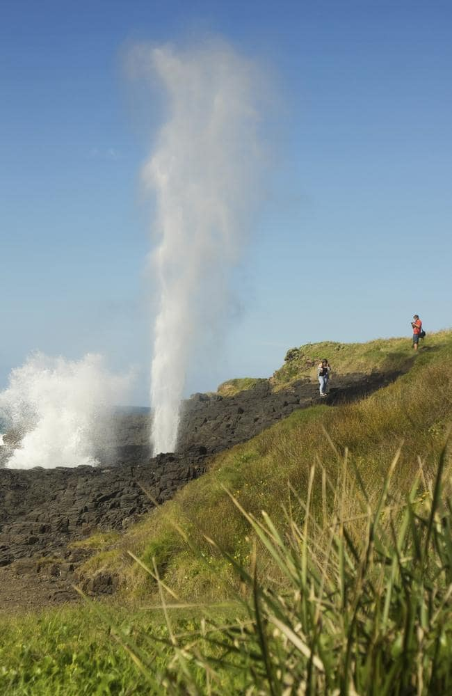 The Kiama blowhole is one of the dramatic seaside attractions.