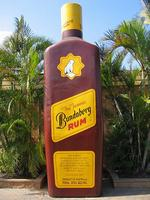 <p><strong>THE BIG BOTTLE<br /> Bundaberg, Queensland</strong><br /> <br /> It's the drink that made the town famous, and now there's a statue to match. This Bundy Rum bottle is six metres high, and is conveniently located near the Bundaberg Rum distillery. <br /> <br /> Picture: Flickr user Timm Williams</p>